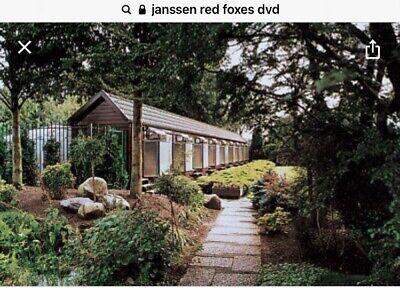 Janssen Red Foxes  , Racing Pigeon Dvd