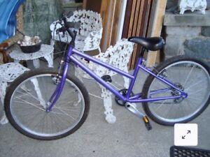 Norco 5 speed girls bike