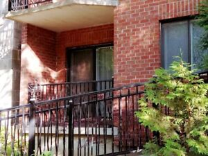 Nice 3 1/2  condo in DT for rent during Summer