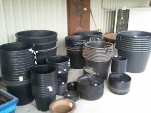 Black plastic pots. Many sizes. Start at $2.50 for a 25cm pot. Heatherton Kingston Area Preview