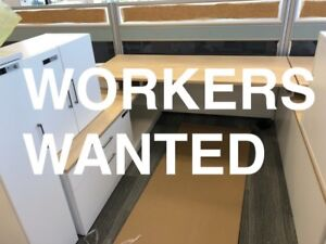 RELIABLE WORKERS WANTED - CASH JOB