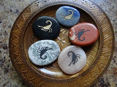 *SCORPION* Carved Worry Stone Gemstone Totem Wiccan Pagan Familiar Metaphysical