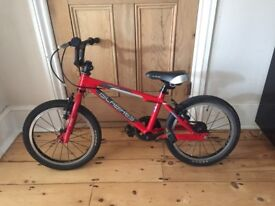 Red Islabike Cnoc 16 for sale