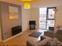 Serviced Apartment Hotel £70 PER NIGHT