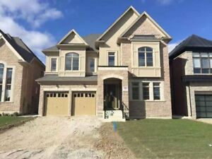 BRAMPTON Mississauga /Steeles  5bedroom New House for rent