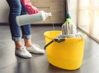 Commercial Cleaner for Hire