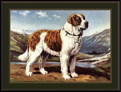 BERNARD DOG WARNING Aluminum Sign Dog Decal V2846 ST