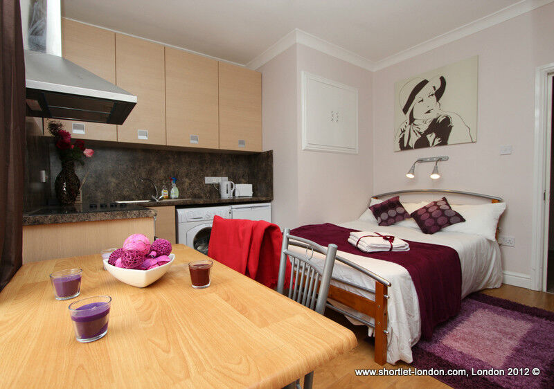 Compact Studio Short Let London Flat Suitable For 2 People Holiday Apartment