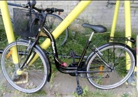 Women Bicycle