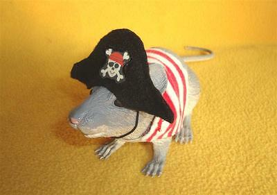 Pirate Costume for Rat from Petrats