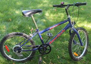 SC 500 Super Cycle Boy's Bicycle - Royal Blue