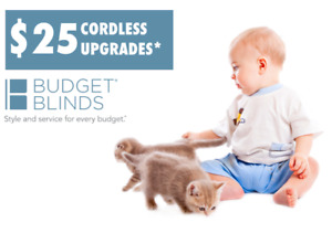 $25 CORDLESS UPGRADES! Child & Pet friendly window coverings!