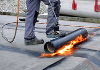 Commercial & Residential Flat Roofing Specialists
