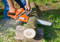 TREE CUTTING         Call 902 -567-2953  TXT 902-329-0285