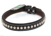 Premium Quality English Bridle Leather Studded Dog Collar[new]