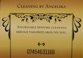 Mobile domestic cleaning services.