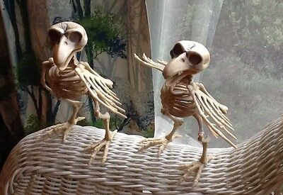 Buy 2 get 1 Free SKELETON BIRDS HALLOWEEN PROP SPOOKY creepy BONE Posable Decor