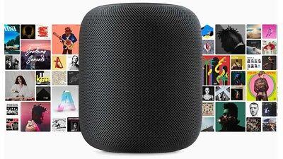 Apple HomePod Pitch-black  Home Pod Mac Sound smart device IOT