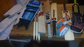 A Collection of Cricket Sports Kit Items, bats, pads,gloves, stumps £40 the lot
