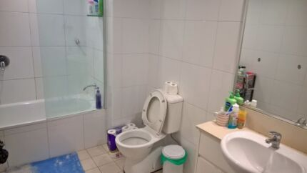 International room available for Tidy Female on 2 October