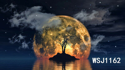 Halloween Background Animation (Vinyl Studio Backdrop Photography Background 6X5FT Halloween Moon Tree of)