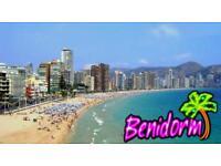 Spain or ibiza travel partner
