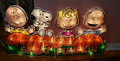 Vintage Light Up Halloween Peanuts Snoopy The Great Pumpkin Yard Sign Lights WoW