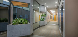 Premium Office Space for Lease on Spring Garden Road