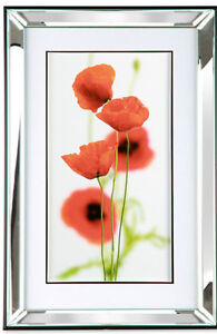 40 x 60 Wall Art Picture With Mirror Glass Mounted Frame - 3 Flower Designs