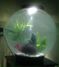 Bio-orb 60ltr.. fish tank