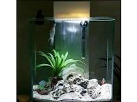 Fluval Edge fish white gloss tank 46l