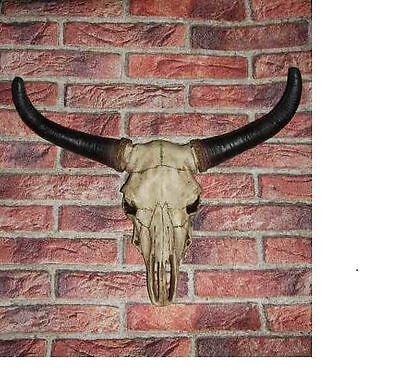 Büffelschädel Bullenkopf Langhornschädel Skull Amerikanischer Büffelschädel  NEU