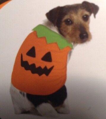 NEW Dog Small or Medium PUMPKIN JACK O' LANTERN Hallloween Harvest Costume Vest