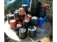 Garden Pots. Hundreds available. Collection from Wareham