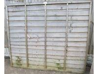 Standard Fence Panel