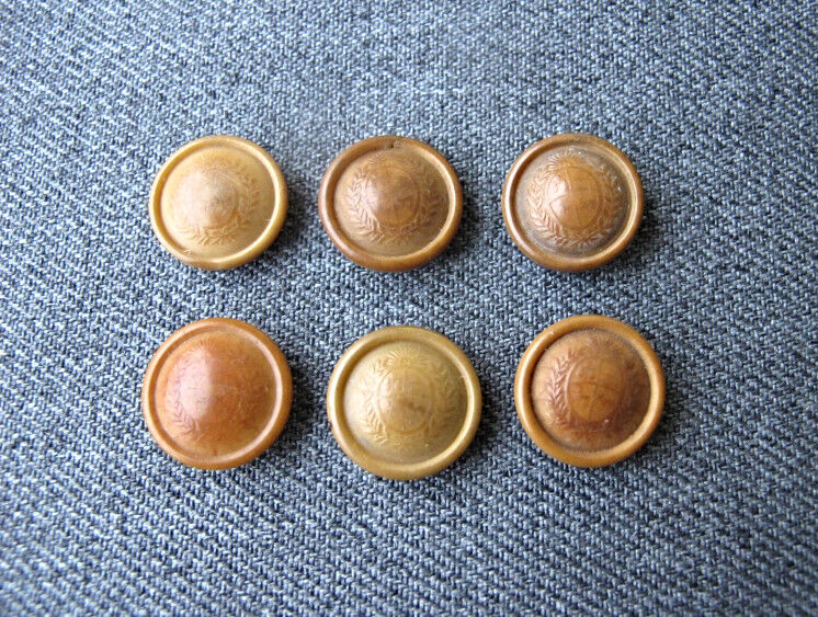 6 ANTIQUE EARLY 1900 DECORATED WITH A SHIELD TAGUA NUT MILITARY BUTTONS