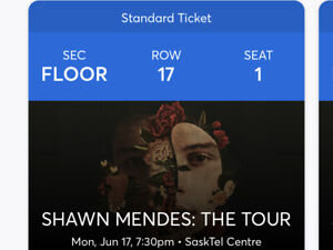 Shawn Mendes Tickets (3)