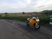 triumph daytona *swap car *