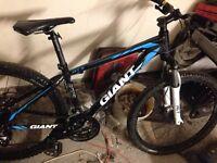 Giant Revel 1 Mens Mountain bike