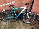 Girl/ladies Apollo bike