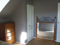 Furnished 1 BR + spare, shared entry, separate kitchen/bath