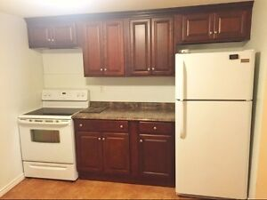 CENTRALLY LOCATED HOUSE FOR LEASE. FULLY RENOVATED St. John's Newfoundland image 2