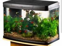 Fish tank 40 litre. Never been used