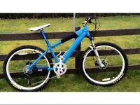 Custom DH Bike