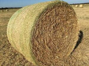 Freshly Cut Hay, 5x4 Round Bales Nar Nar Goon Cardinia Area Preview