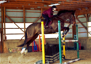 Ship-In Riding Lessons at Bronte Creek Equestrian