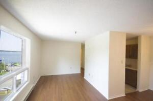 Newly Renovated Bedford Hwy 1 Bdrm Only $995!