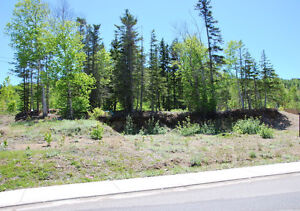 5 South Brook Point, Lot #47-Muriel or Richard-NL Island Realty