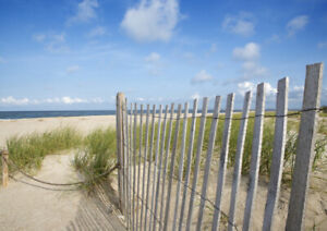 WANTED: SAND/SNOW/DUNE FENCING