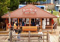 Beavertails Manager